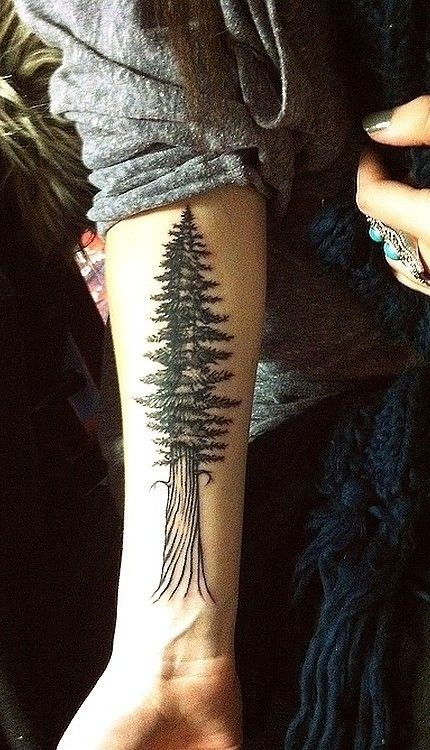 17 best images about tattoos trees on pinterest trees scottish tattoos and geometric. Black Bedroom Furniture Sets. Home Design Ideas