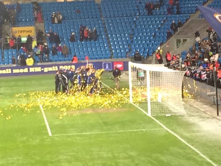 Stabæk kvinner cupgull 2013