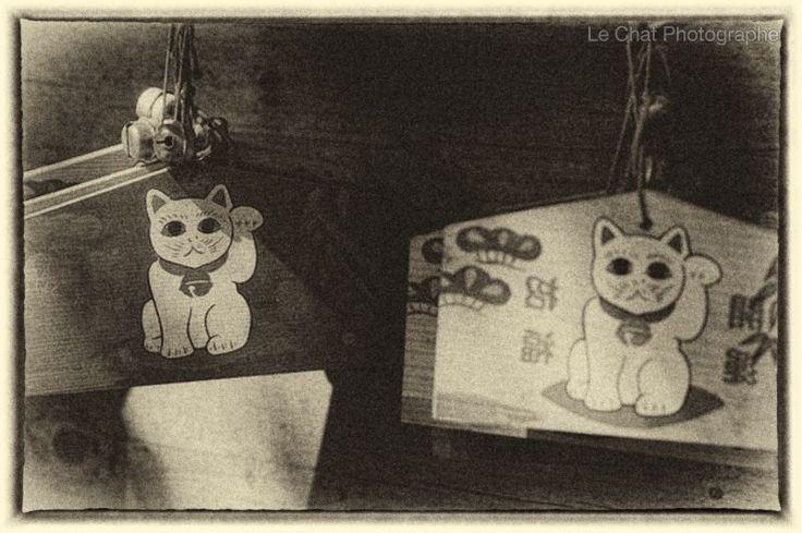 Ema à l'effigie d'un maneki neko
