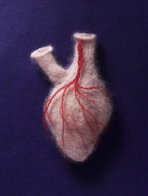 SOFT HEART by Sarah Illenberger