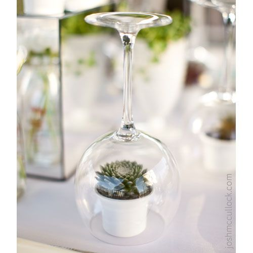 succulent wedding favors or placeholders in upside down wine glass.