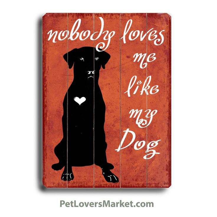 My Dog Loves Me Quotes: 36 Best Dog Signs Images On Pinterest