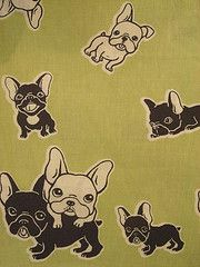 Cute French Bulldog Pattern