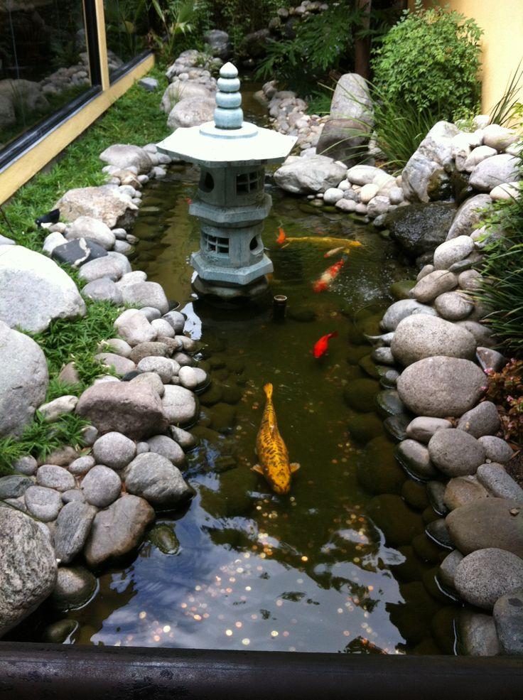 Fishing Pond idea in the backyard co