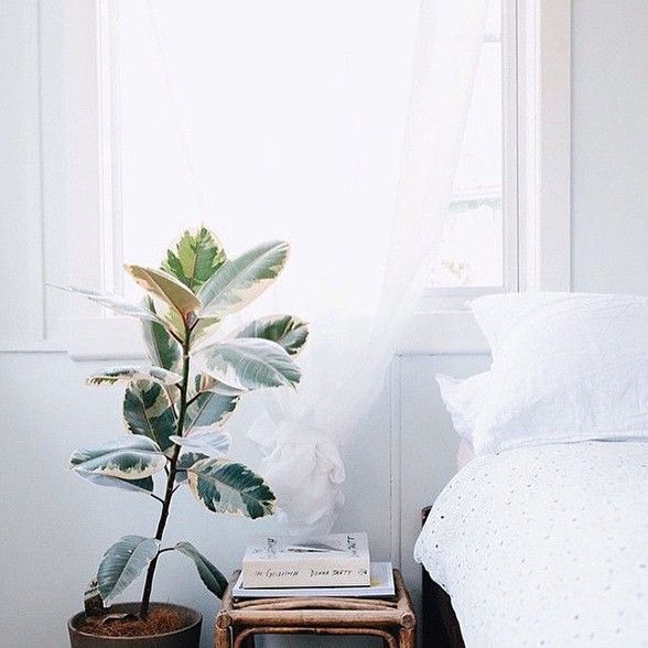 Spruce Up Your Home For Summer. Hot weather has finally arrived in Sydney; BBQ's are being dusted off and swimmers are emerging out of the back of wardrobes. It's that time of year to shed some layers and take time to relax against the backdrop of a hot summer evening.