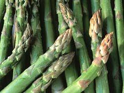 Grüner Spargel selber anpflanzen