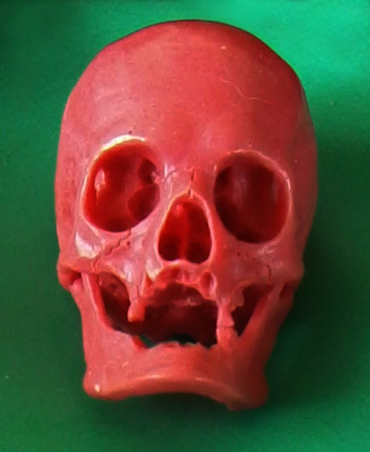 wax carving, wax jewelry, human skull, hand made.