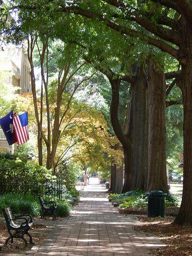 Pathway on the Historic Horseshoe- University of South Carolina