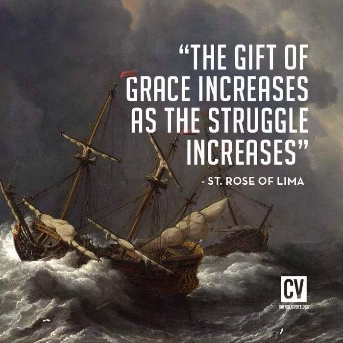 the gift of grace...  --St. Rose of Lima  //  CatholicVote.org