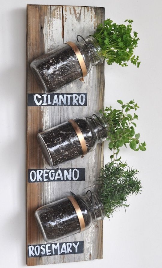 Google Image Result for http://www.upcyclethat.com/wp-content/uploads/2012/09/vertical_mason_jar_garden1.jpeg
