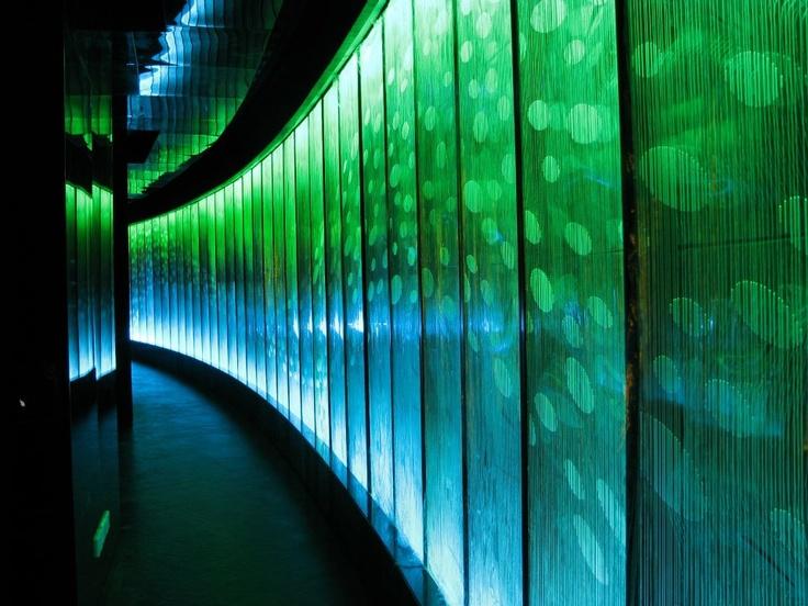 Muro Anemix de 23 x 2,5 mt, en Dubai