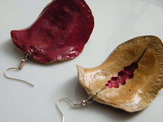 SALE Wood earrings. Jacaranda seed pods colored by LinBerSa