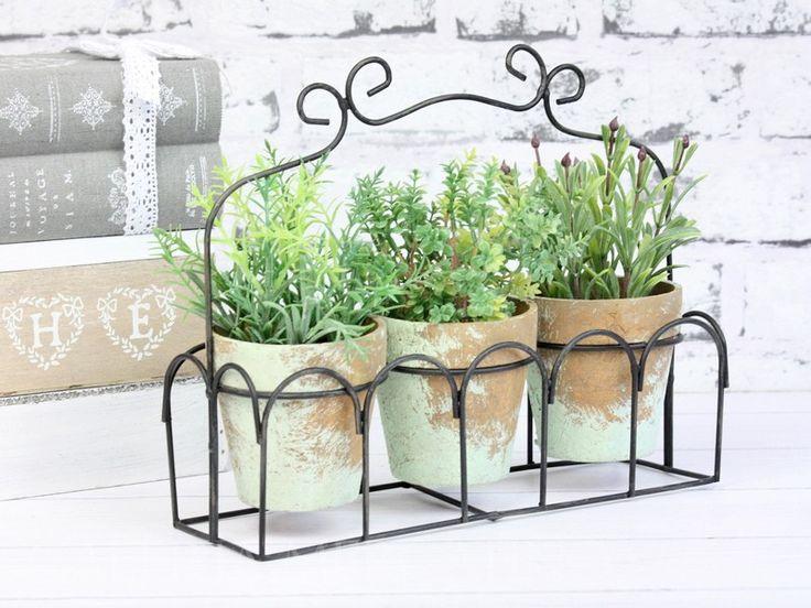 Zestaw 3 roślin w metalowym koszyku (2688) - Galeria Mercatino