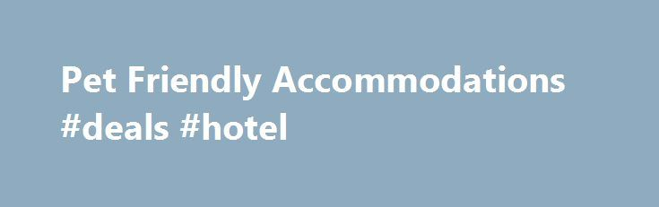 Pet Friendly Accommodations #deals #hotel http://hotels.remmont.com/pet-friendly-accommodations-deals-hotel/  #motels that take dogs # Pet Friendly Accommodations Find Myrtle Beach pet friendly hotels, resorts, condos, vacation rentals and additional accommodations where pets are welcome on your vacation. With these perfect, pet-friendly places, your pet will have just as much fun as you! Barc Parcs While in Myrtle Beach, the family friendly atmosphere of the [...]Read More...