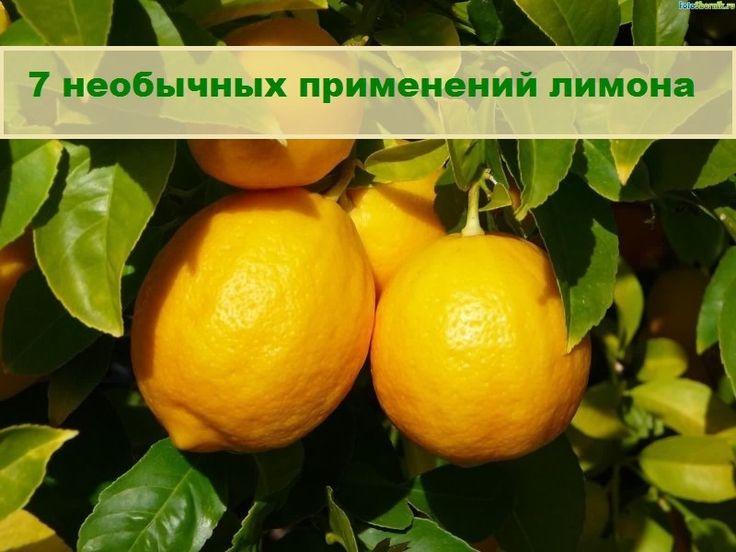 7 удивительных способов применения лимона в косметических целях