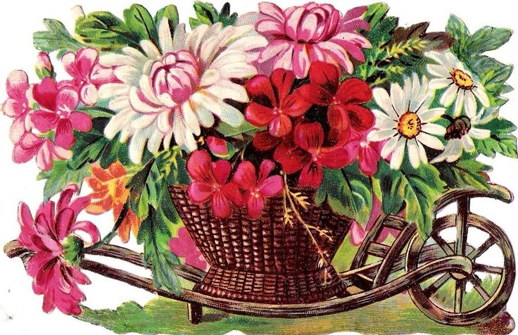 Oblaten Glanzbild scrap die cut  chromo  Blumen Karre 14,5 cm  wheelbarrow