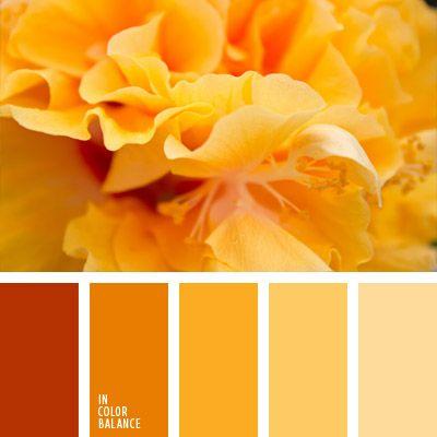 Deja entrar la calidez del sol en tu cocina o salón-comedor con estos tonos anaranjados y amarillos.  La ropa de otoño en dichos colores te destacará de la muchedumbre.        La foto de esta paleta fue sacada por la fotógrafaEvgenia Tuzinska.