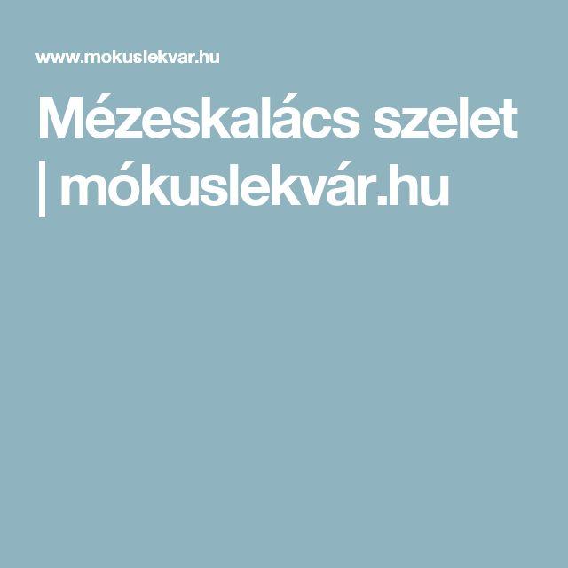 Mézeskalács szelet | mókuslekvár.hu