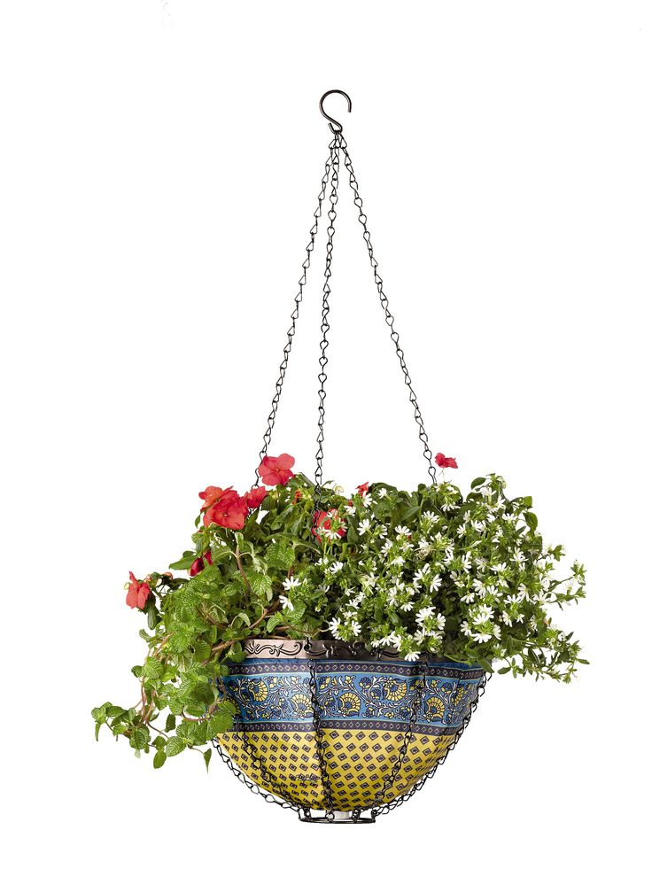 77 best hanging baskets images on pinterest 2018 year for Colorful hanging planters
