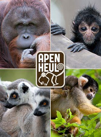 Apenheul - Apeldoorn