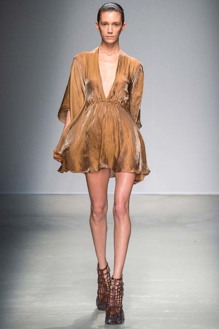 Iris van Herpen Fall 2015 Ready-to-Wear Fashion Show