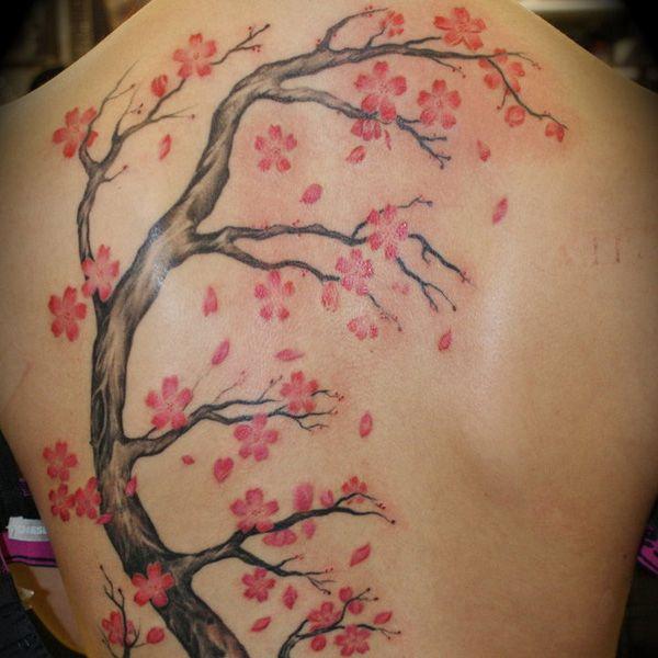Flower Tree Tattoo: 25+ Best Ideas About Apple Blossom Tattoos On Pinterest