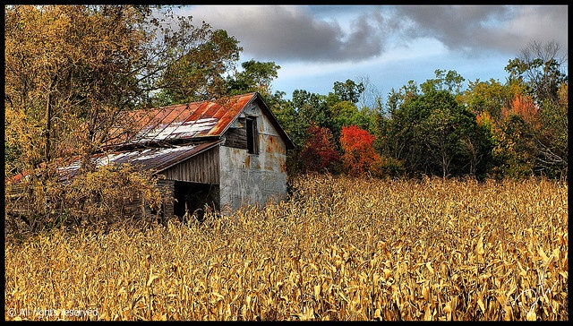 443 Best Images About Abandoned Farms On Pinterest