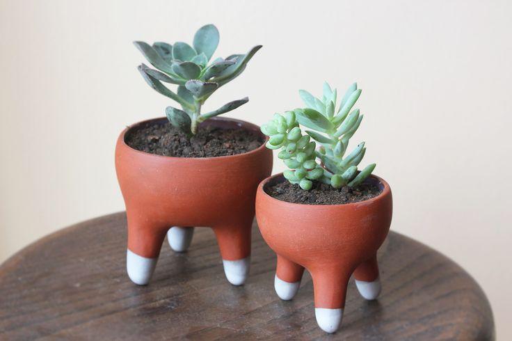 Macetas de porcelana y terracota Handmade Ceramic Planters  www.mariapazyachan.com Instagram: mpyachan