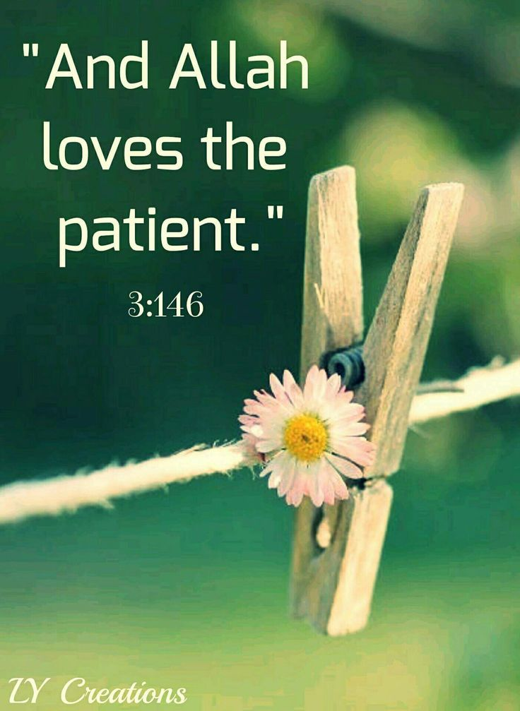 And Allah loves the patient ...