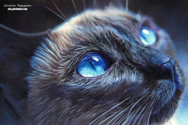25 Mind Blowing and Hyper-Realistic Color Pencil Drawings by Christina Papagianni