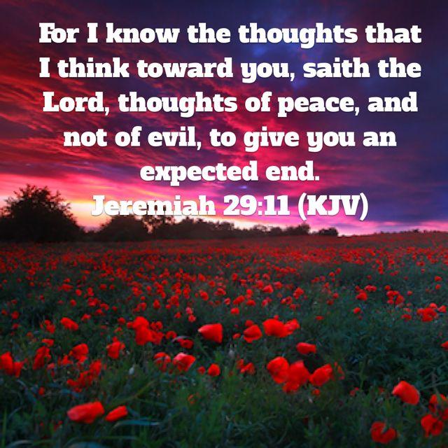Jeremiah 29:11 (KJV)