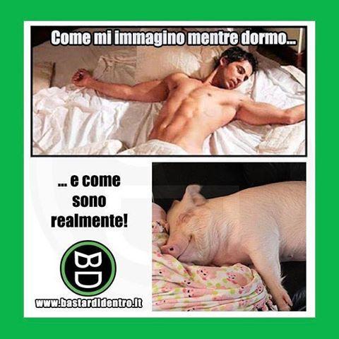 #fantasia VS #realtà  Seguici su youtube/bastardidentro #bastardidentro #dormire www.bastardidentro.it