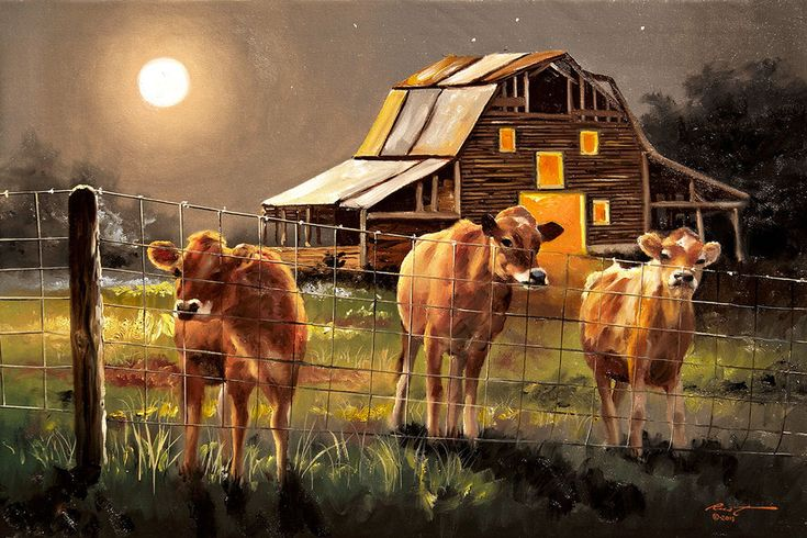Cows by Rusty Rust Art Paper, Canvas or Stretched Canvas Print