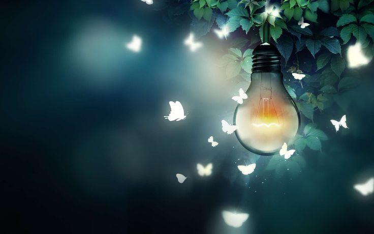 La pollution lumineuse menace la pollinisation
