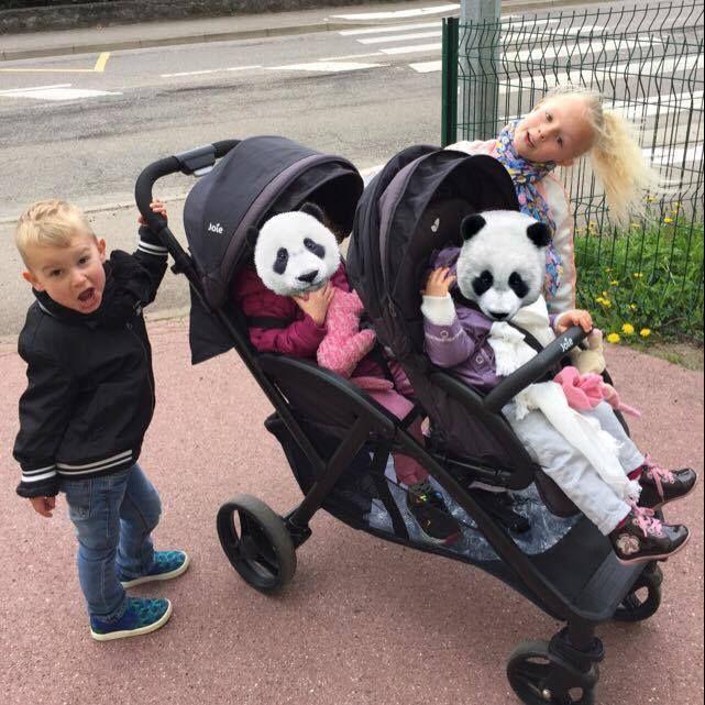 Jessou Family Evalite Duo - joie #joie #poussette @Joie