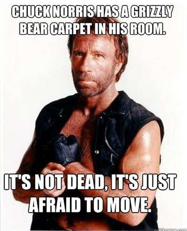 Chuck Norris Jokes   The 50 Best Chuck Norris Facts & Memes (Page 14)