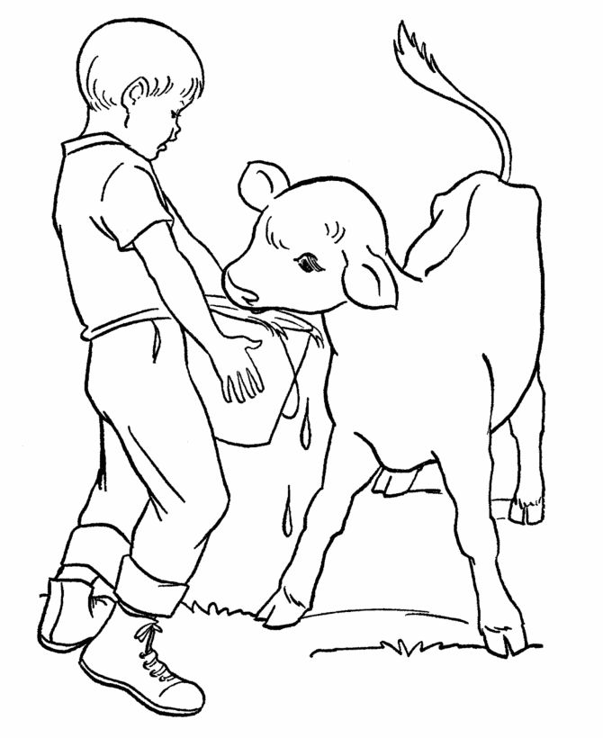 printable animal coloring pages calf | Farm Work and Chores coloring page | Feeding a new calf ...