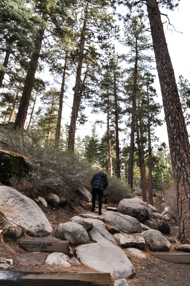 Weekend Getaway: Big Bear, CA Eat at Peppercorn Grille, The Pines Lakefront, Teddy Bear Restaurant, Big Bear Lake Brewing Company (Pumpkin Spice Ale), Black Diamond Tavern; Ski at Bear Mountian or Snow Summit; Hike at Castle Rock Trail (2.7 mile)