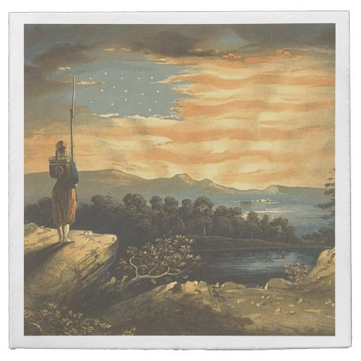 Patriotic 4th of July Napkins.  Currently $38.47.