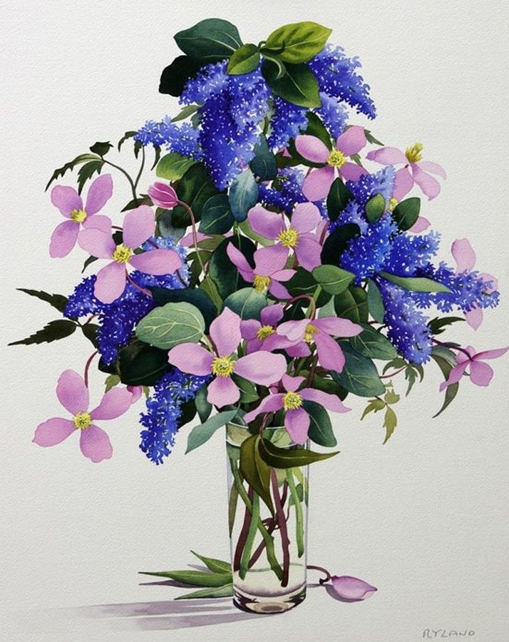 Christopher Ryland SBA (b.1951) — Pink and Blue Clematis and Ceanothus (714x900)