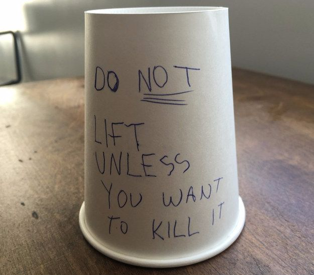 Put a paper cup with this message on your kid's homework desk. | 37 Next-Level April Fools' Day Pranks Your Kids Will Never Forget