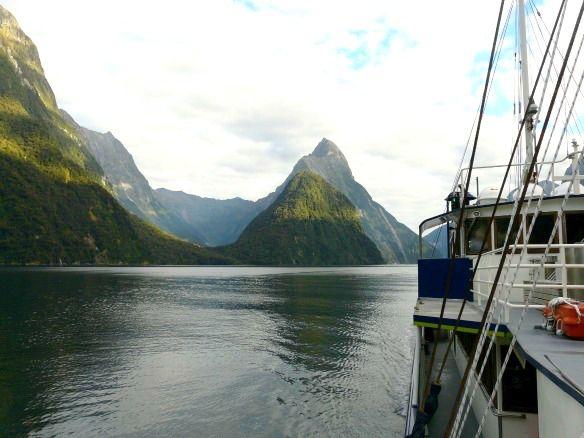 Eine Reihe kleiner und mittelgroßer Reedereien bieten Touren in den beeindruckenden Milford Sound an