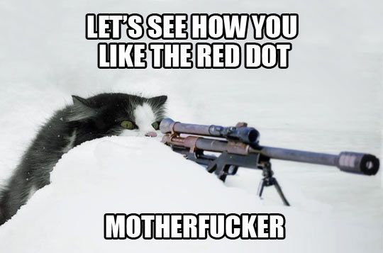 Think about this the next time you have your cat chasing the laser pointer!