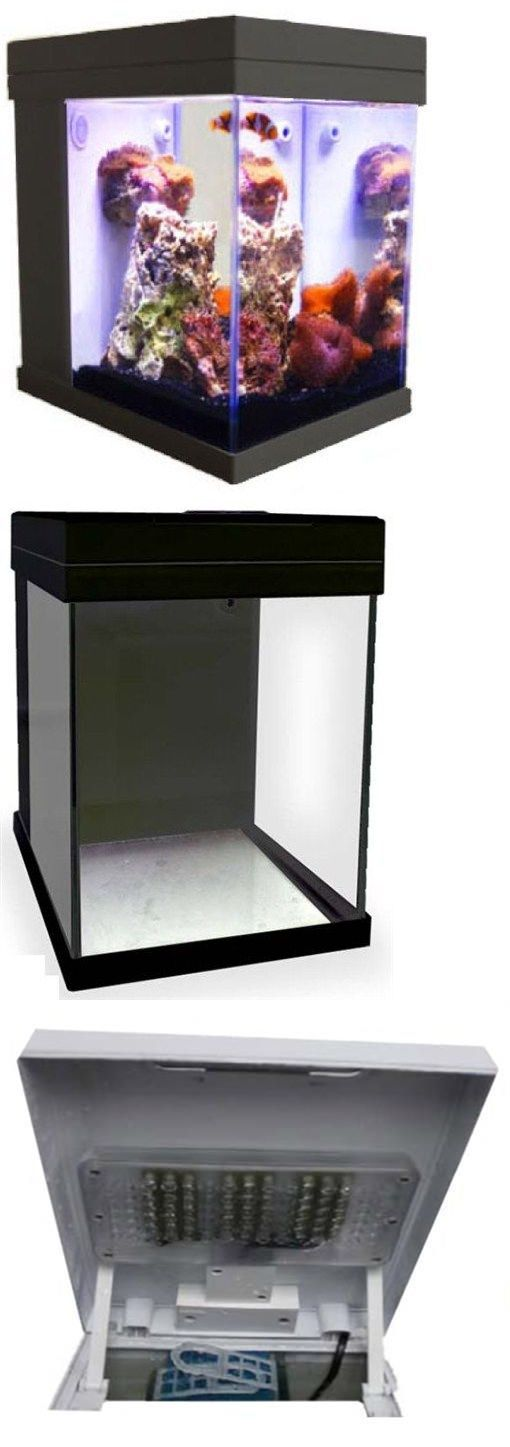 Aquariums and Tanks 20755: [Black] Jbj Mini Cubey 3 Gallon Pico Led Series Nano Cube Aquarium Fish Tank BUY IT NOW ONLY: $99.99