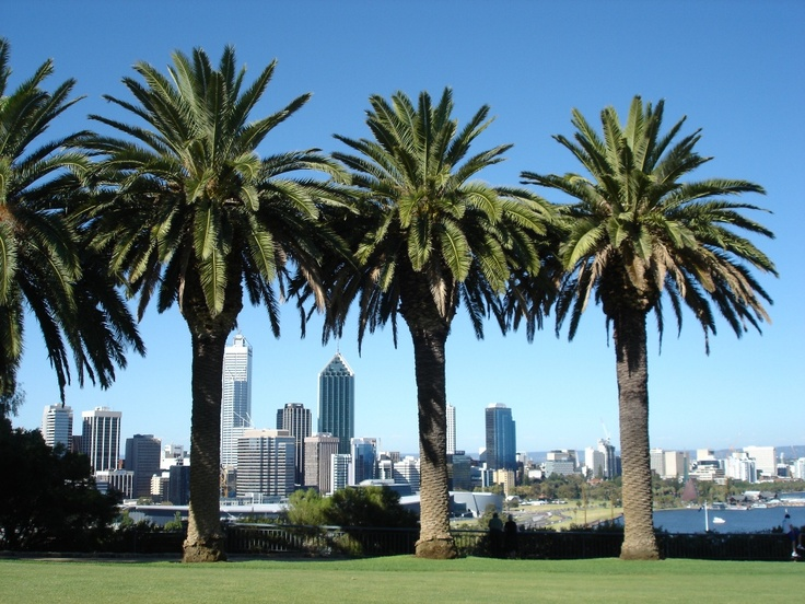 View of the city from Kings Park... Perth, Western Australia. The city I've spent more time in than any other place on earth. So far.