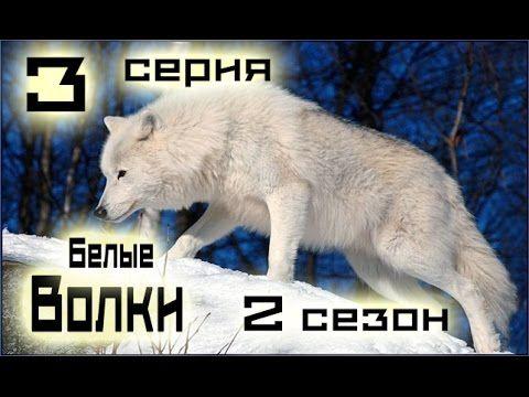 Сериал Белые волки 3 серия 2 сезон (1-14 серия) - Русский сериал HD