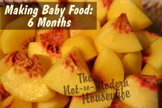 Homemade Baby Food - quick, easy and healthy baby food. Just use a food processor and ice cube tray.
