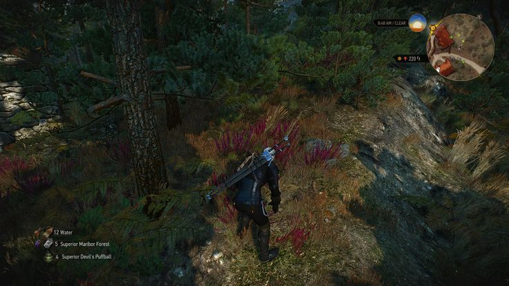Extra Animations at The Witcher 3 Nexus - Mods and community