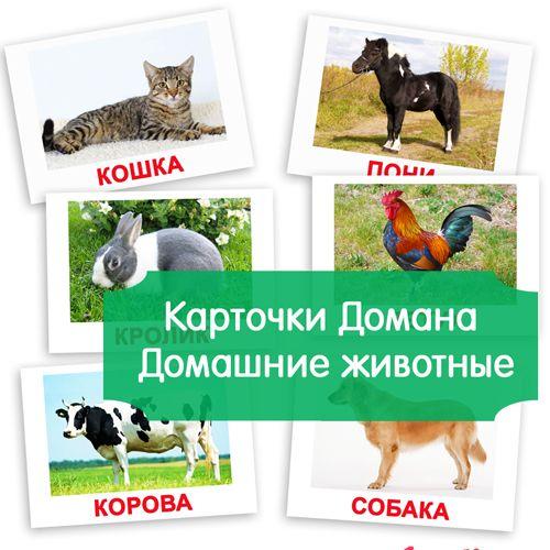 Картинки домашние животные для детей, карточки по методике Домана