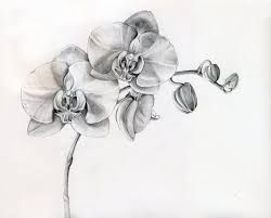 Image result for orchid tattoo designs